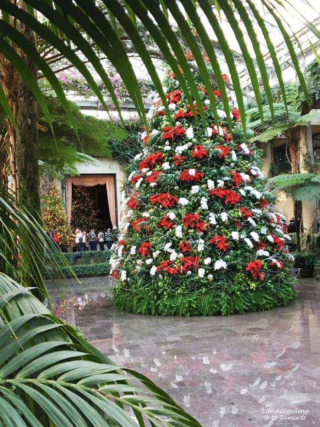 longwood-gardens-conservatory-red-white-tree-1
