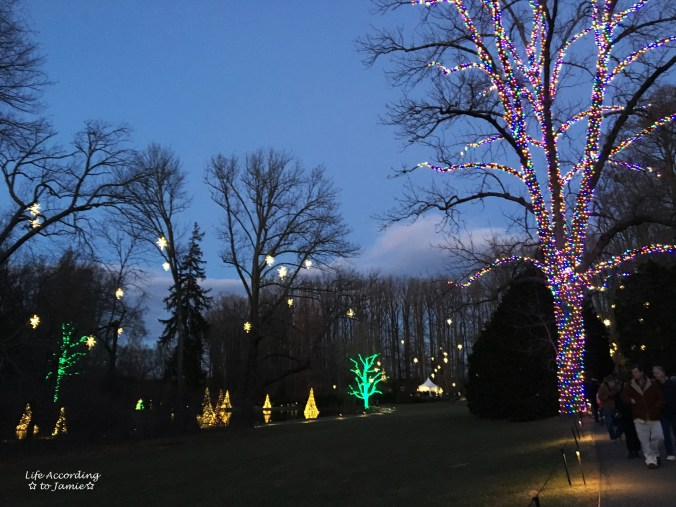 longwood-gardens-floating-trees-colorful-tree