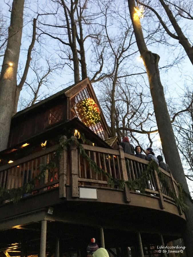 longwood-gardens-tree-house