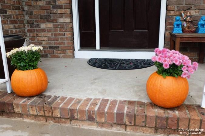 Pumpkin Planter + Mums 8