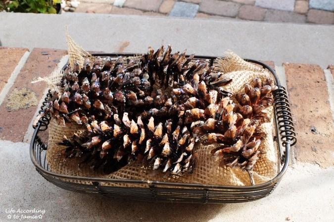 Glitter Pine Cones 4