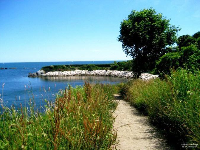 Newport - Cliff Walk