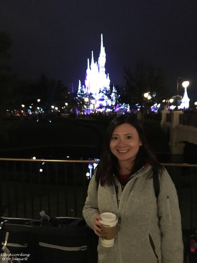 Cinderella Castle - night 1