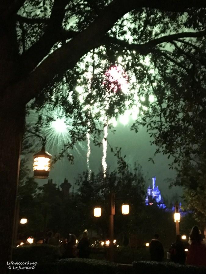 Magic Kingdom - Fireworks 4