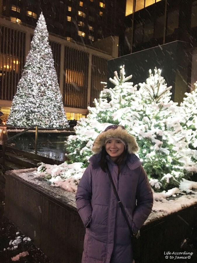 NYC Christmas Decorations