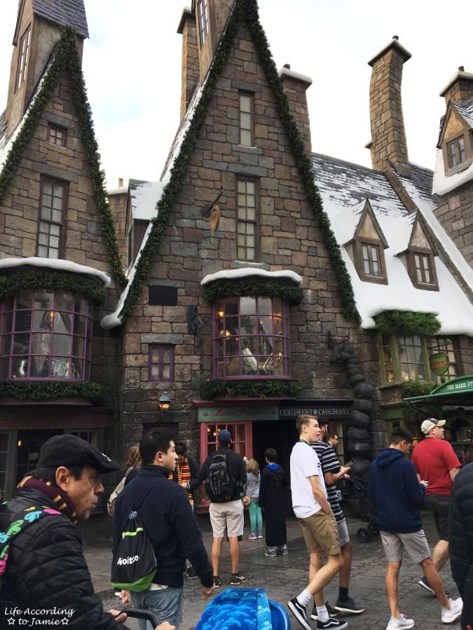 Universal Studios Orlando - Wizarding World of Harry Potter - Hogsmeade 3