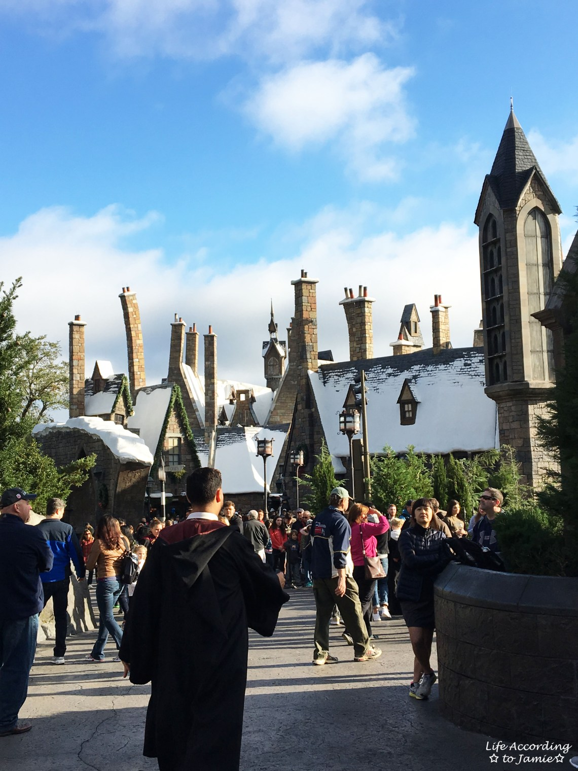 Universal Studios Orlando - Wizarding World of Harry Potter - Hogsmeade