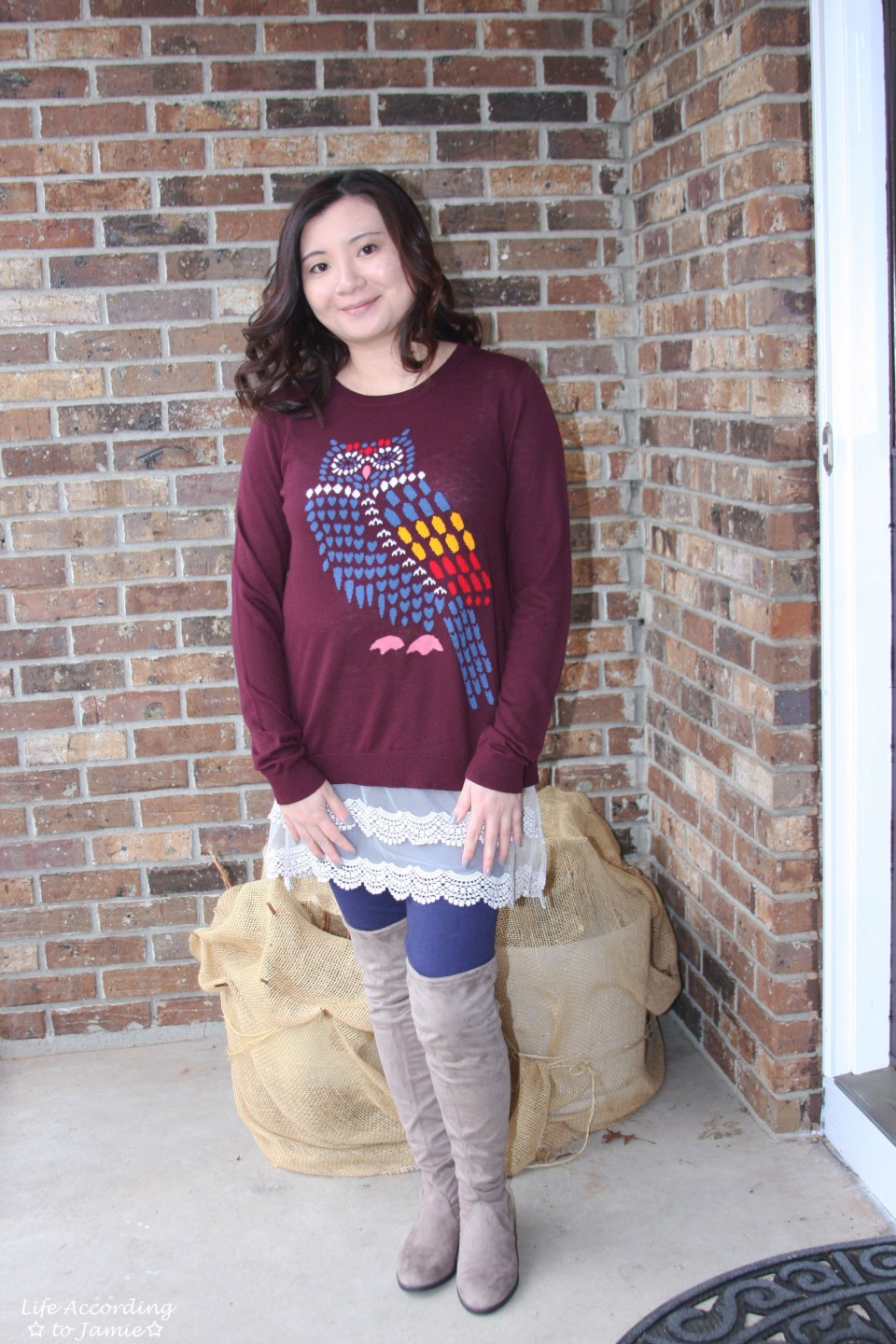 Owl Sweater + Lace Extender 10