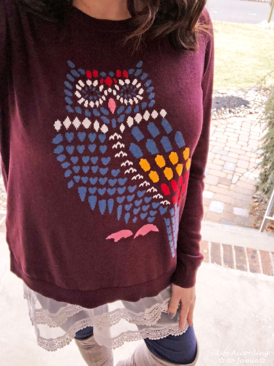 Owl Sweater + Lace Extender 2