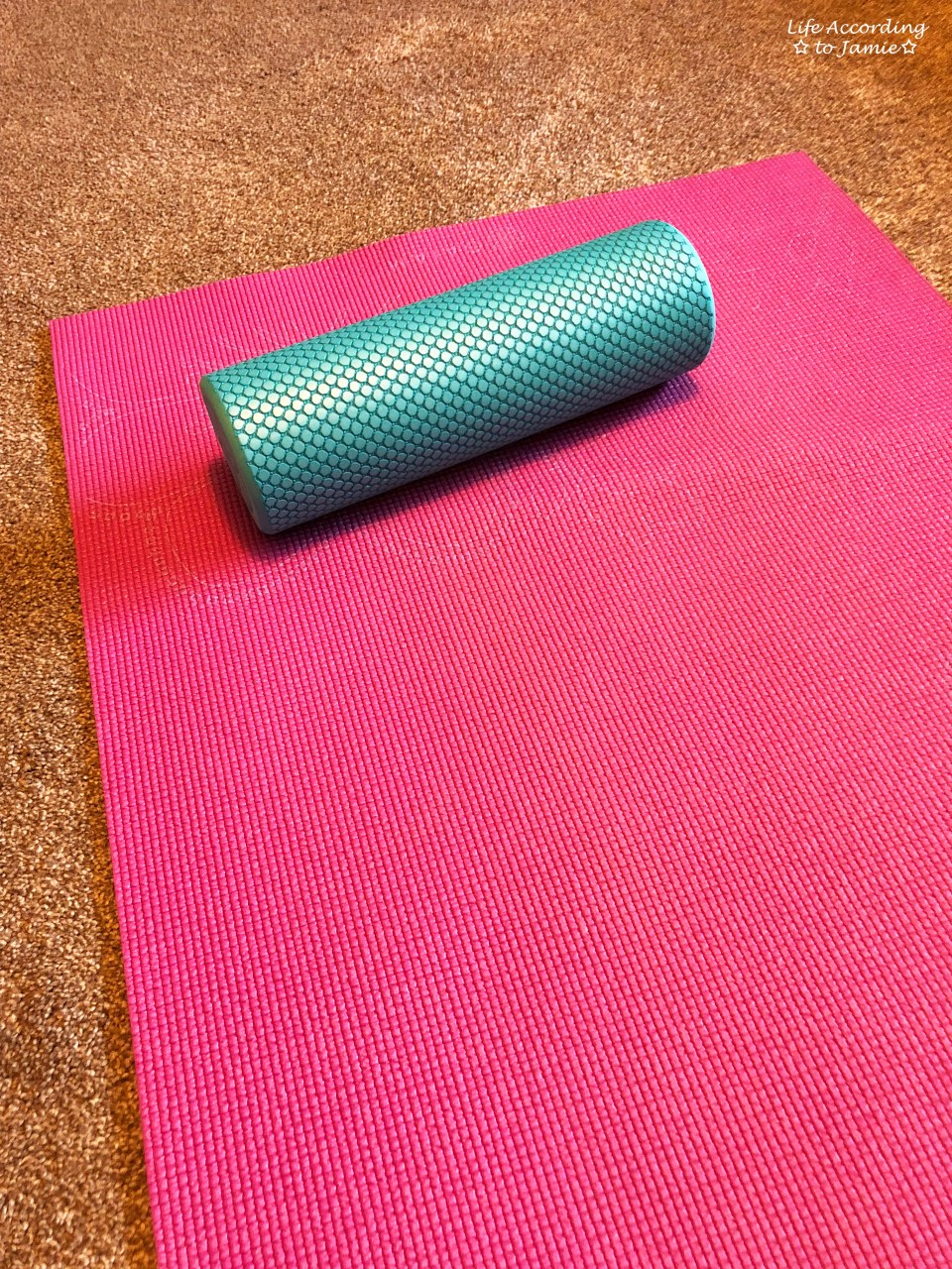 BBG Beginner - Foam Roller