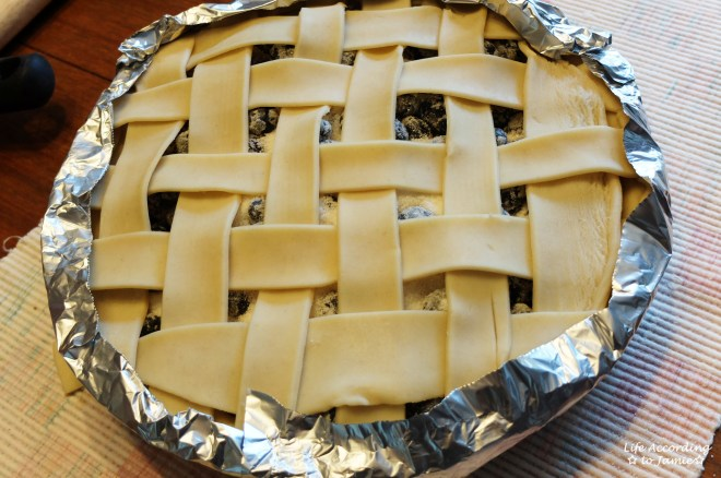 Blueberry Pie 3