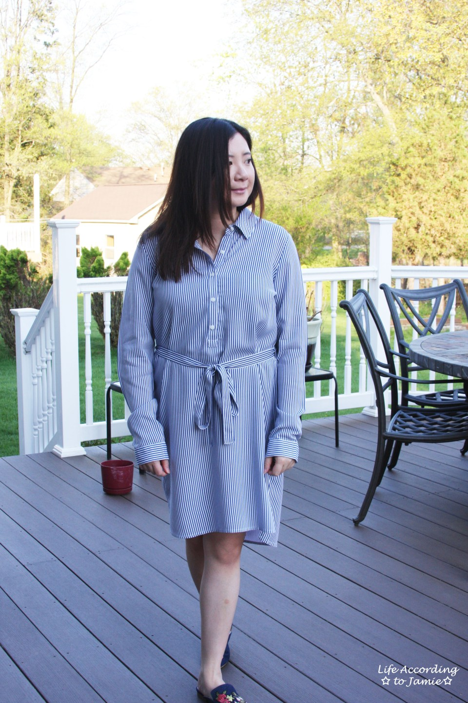 Pinstripe Shirt Dress 5