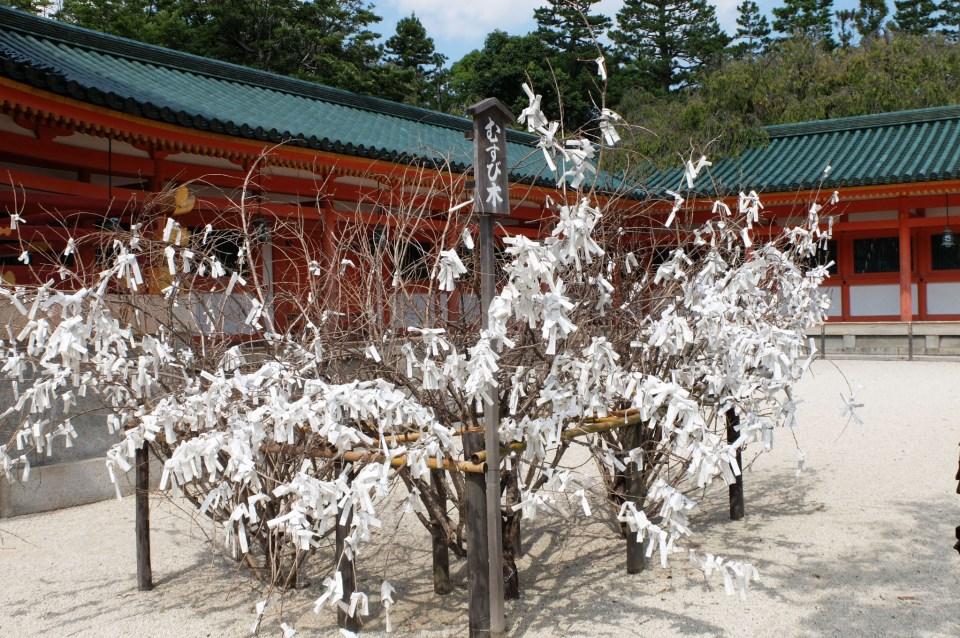 Heian Jingu Shrine 1