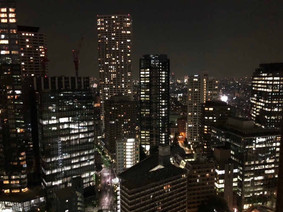 Hilton Tokyo room view - night 1
