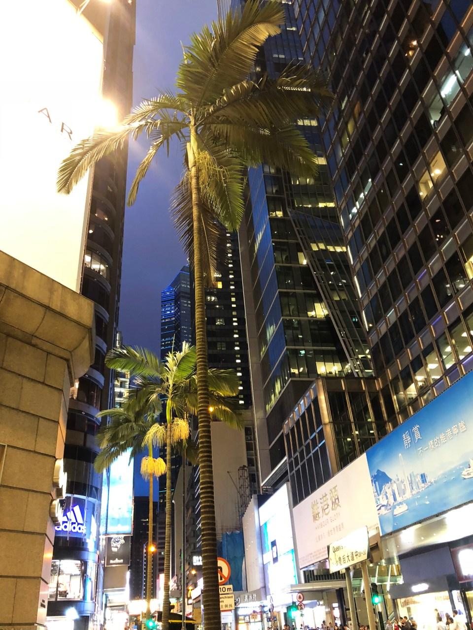 Hong Kong - Central at night 5