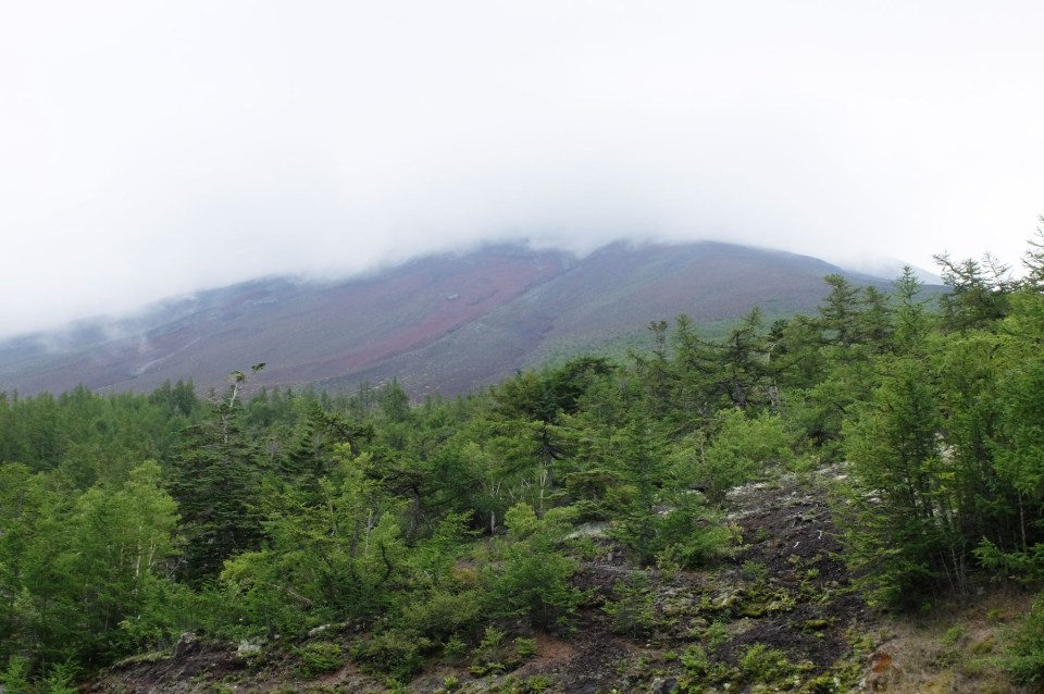 Mt. Fuji 5th Station 7