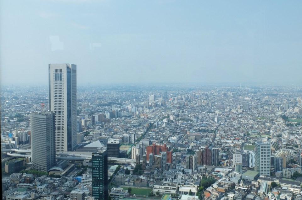 Tokyo Government Building - Observation 3