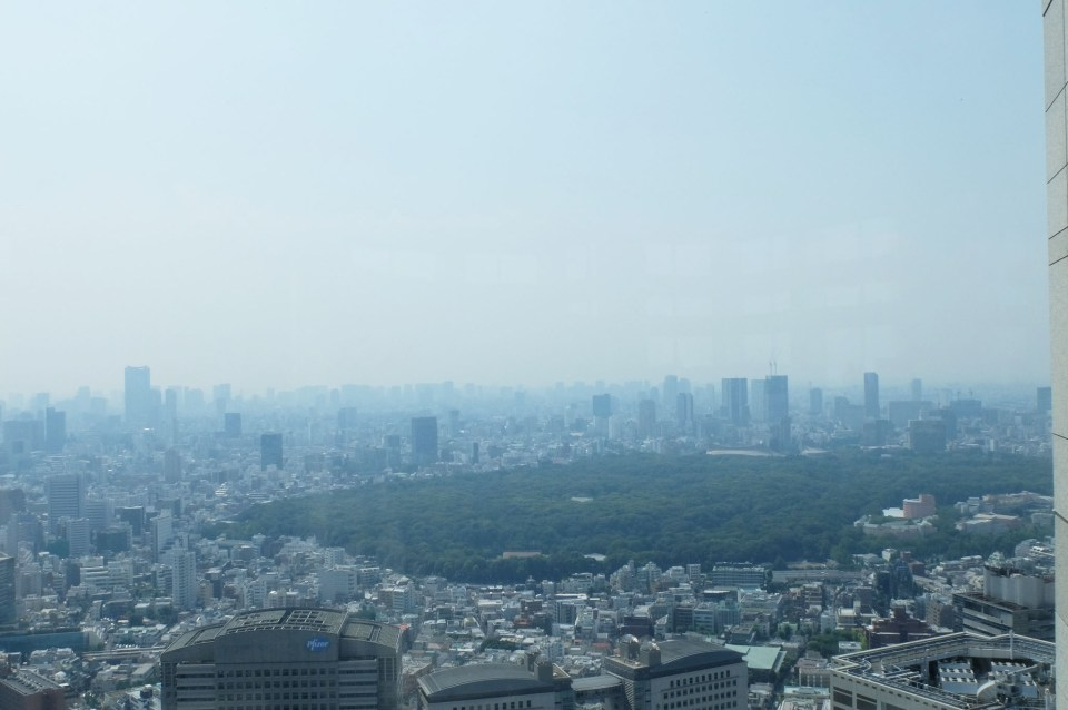 Tokyo Government Building - Observatory 1