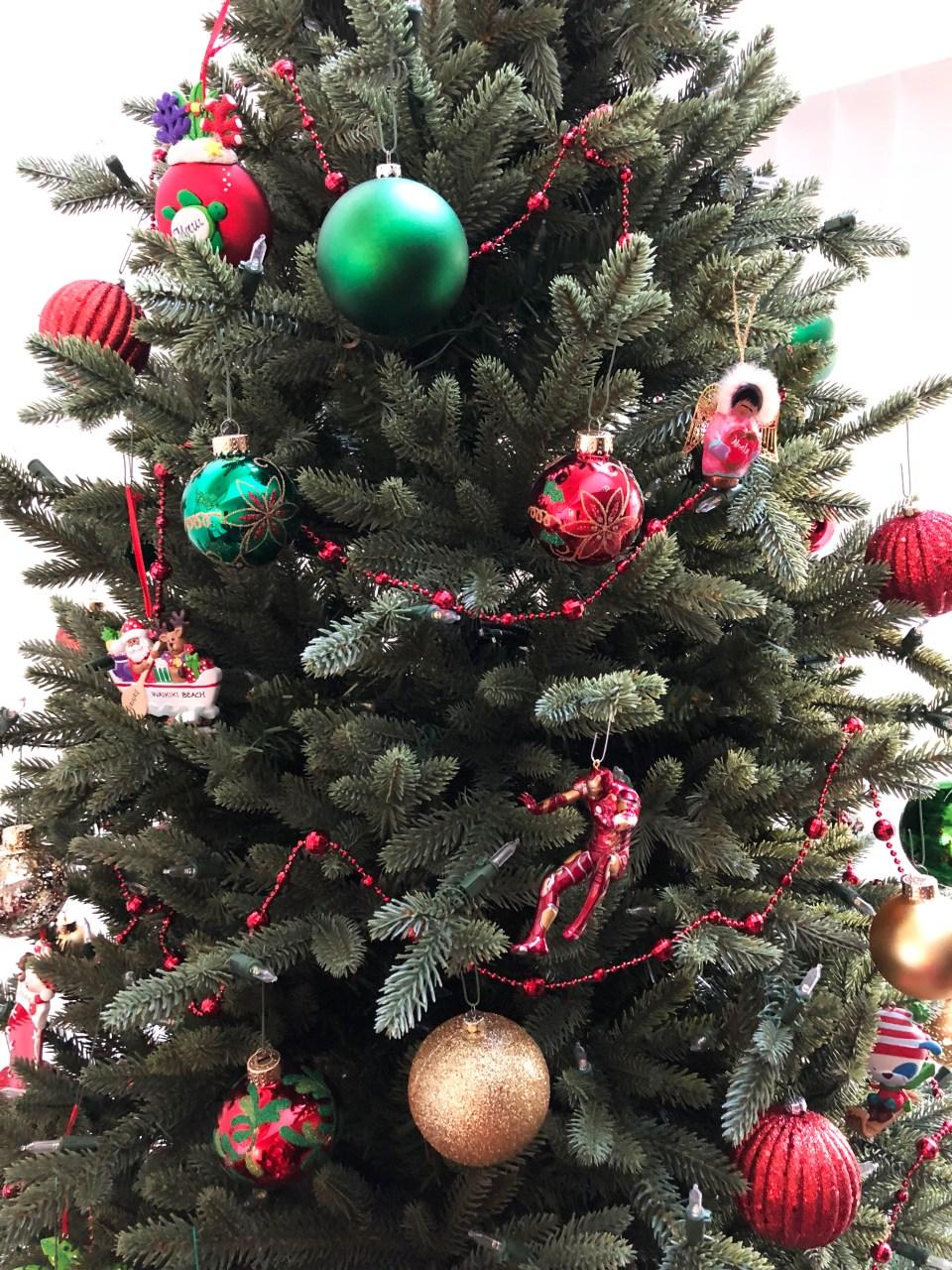 Christmas Tree - Daytime 4