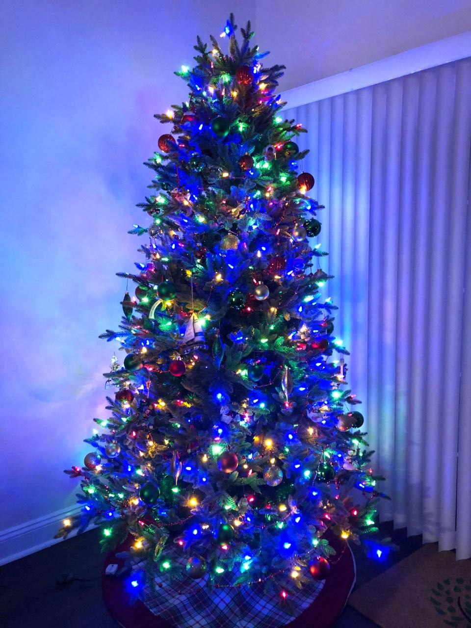 Christmas Tree - Nighttime 1