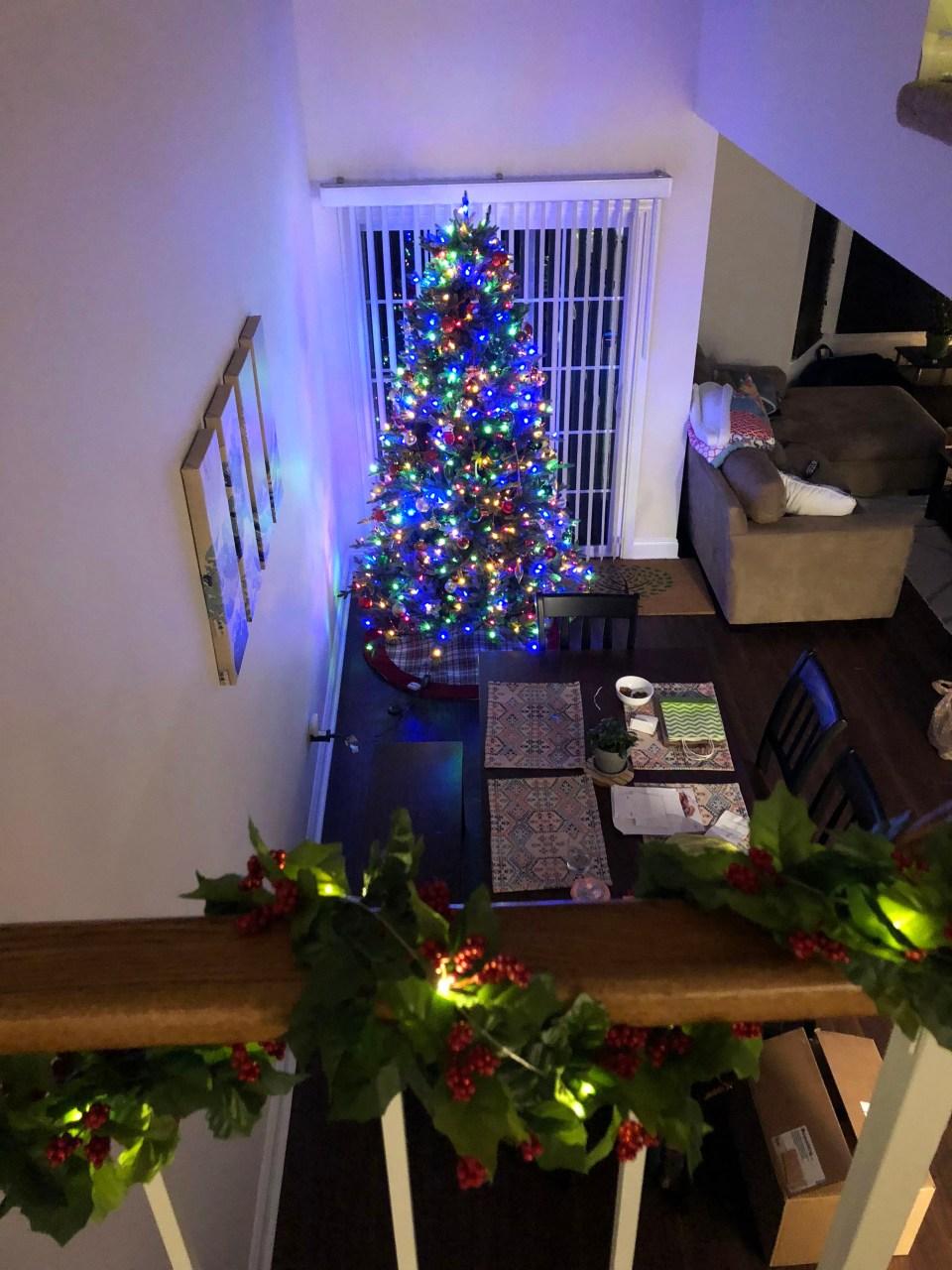 Christmas Tree - Nighttime 2