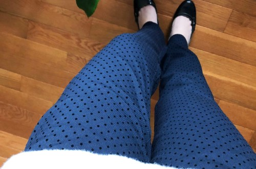 Velvet Polka Dot Pants