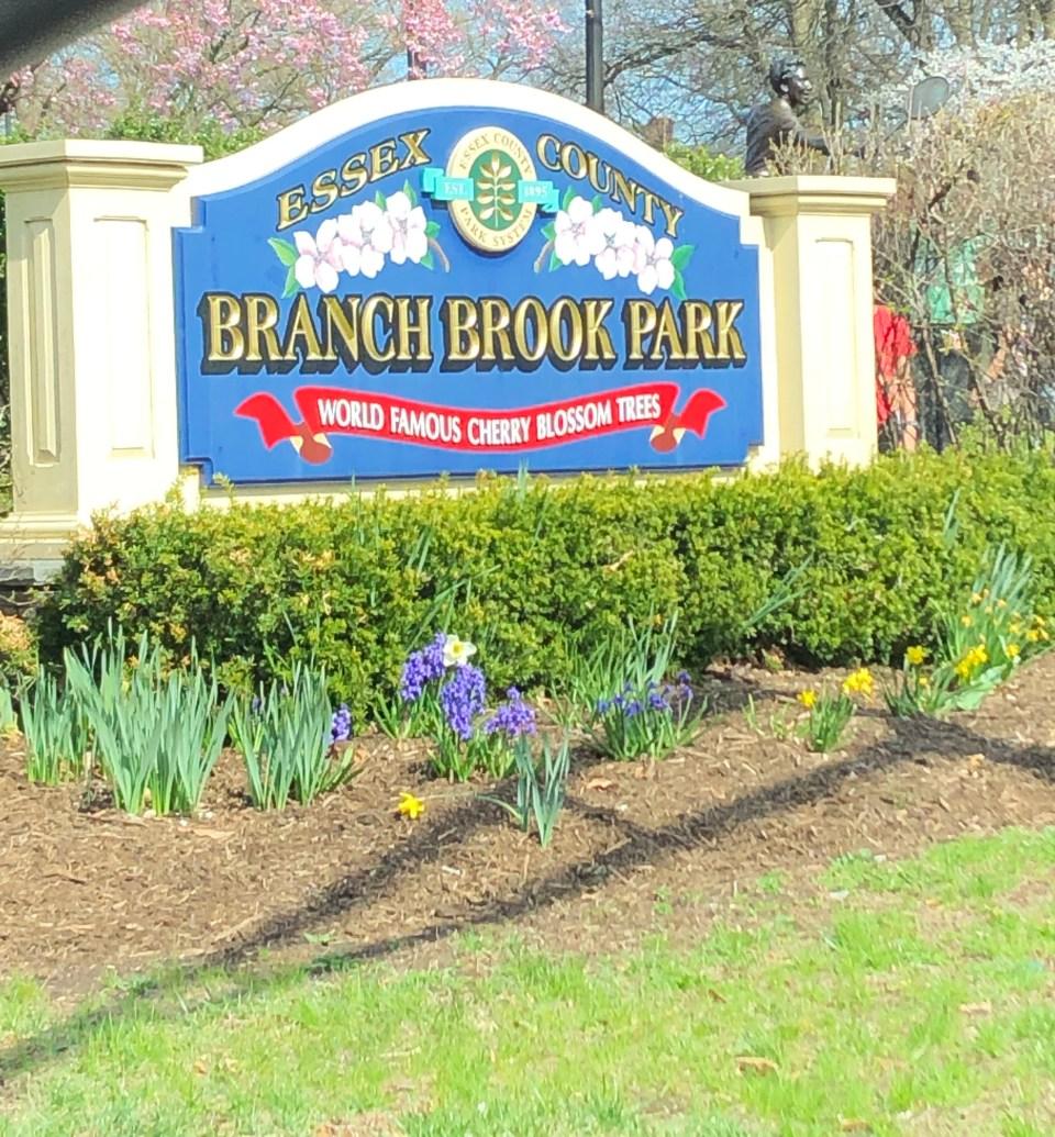 Branch Brook Park - sign
