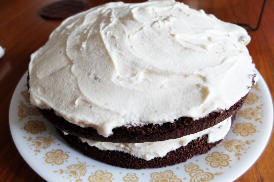 Ice Cream Cake 1