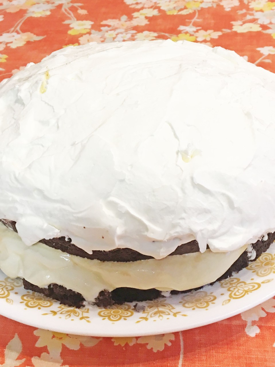 Ice Cream Cake 7