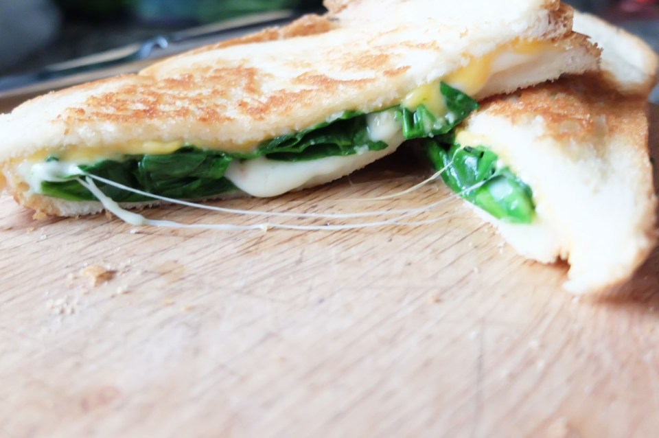 Grilled Spinach & Cheese Sandwich 7