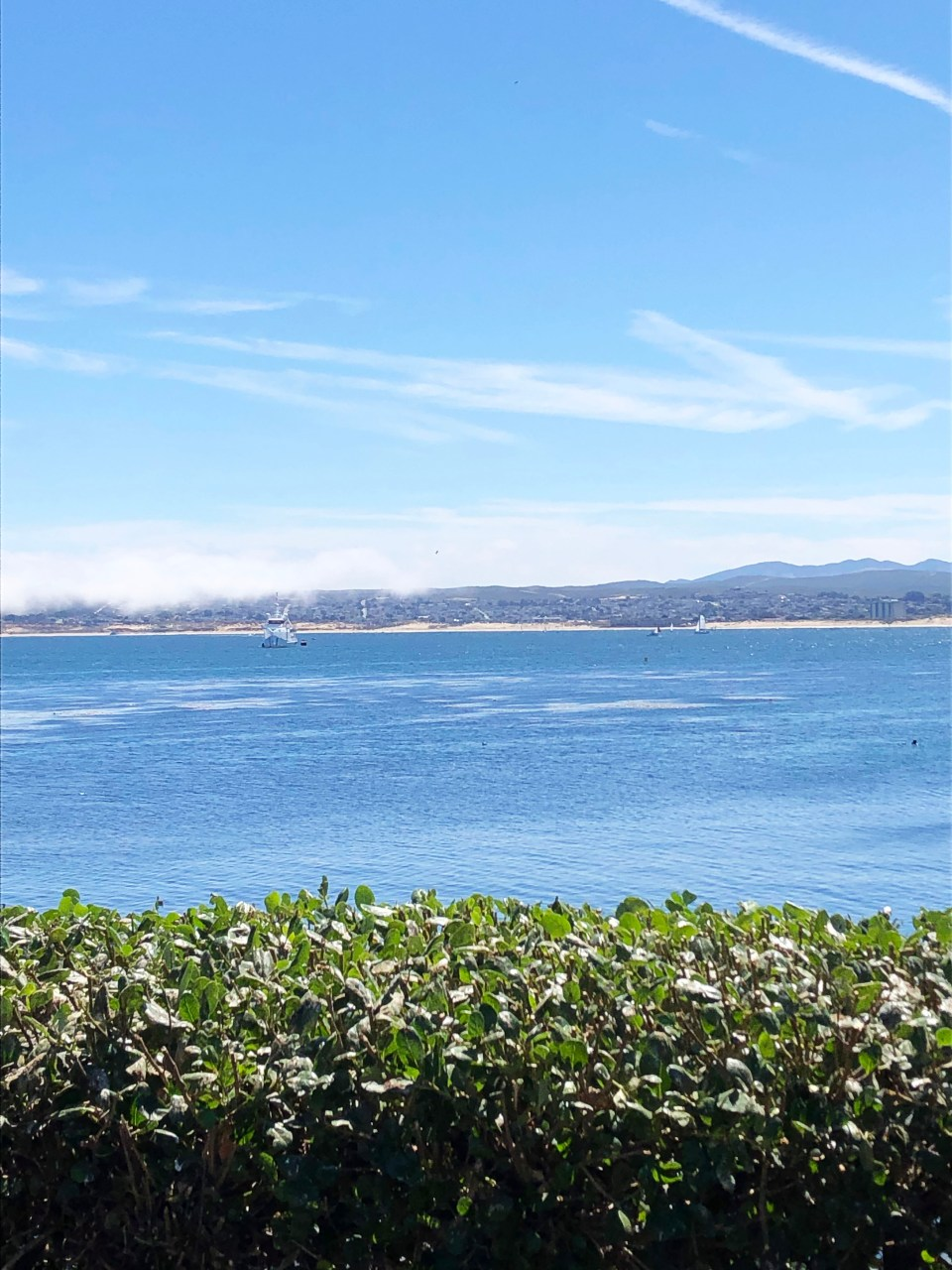 Monterey 3