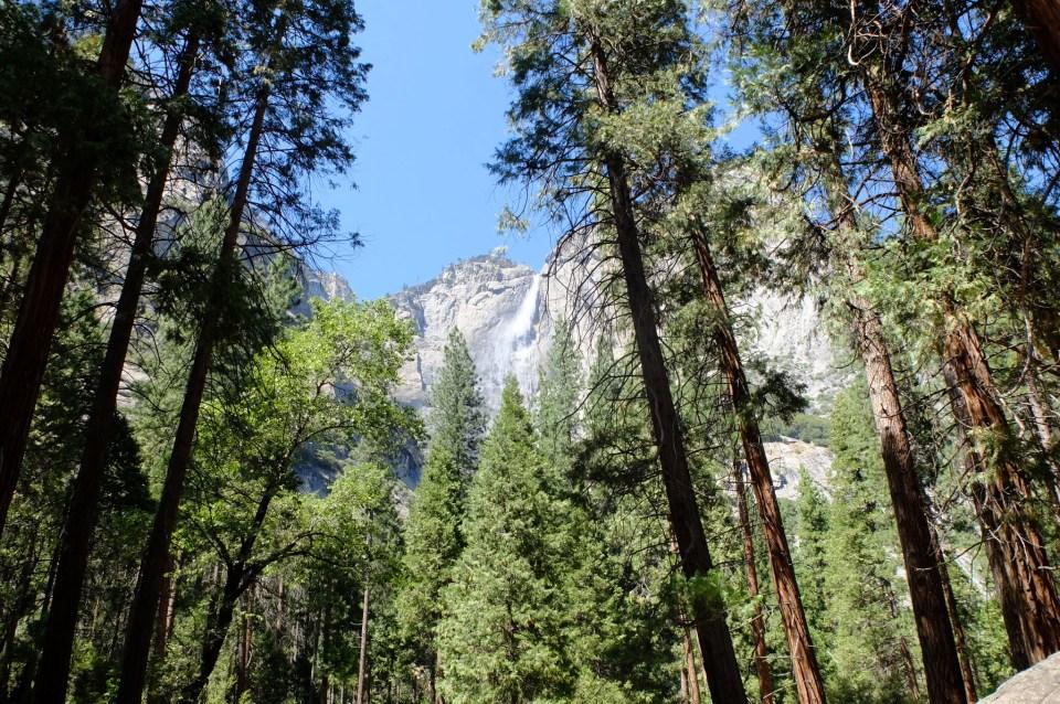 Yosemite National Park 24