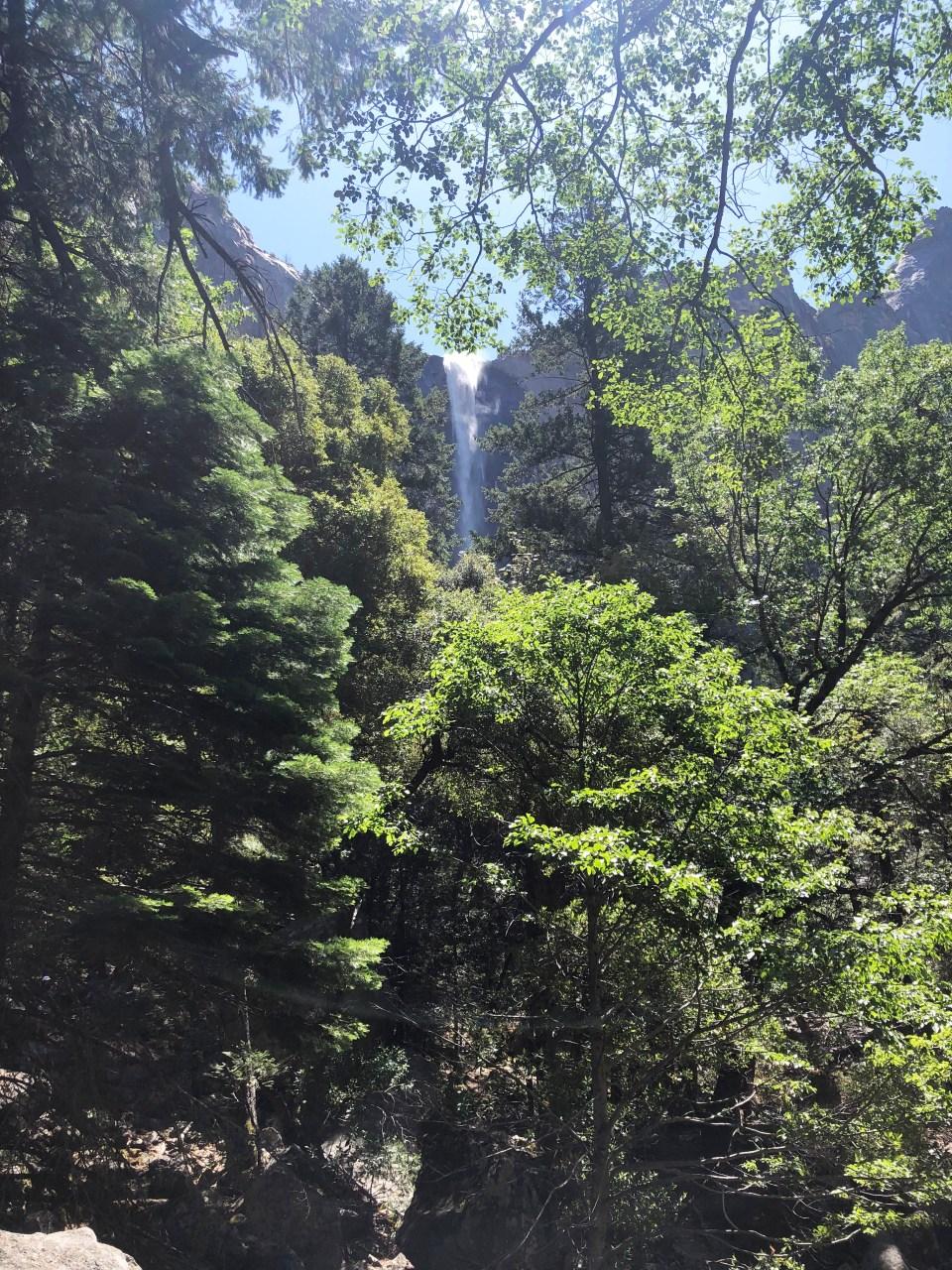 Yosemite National Park - Bridalveil 1