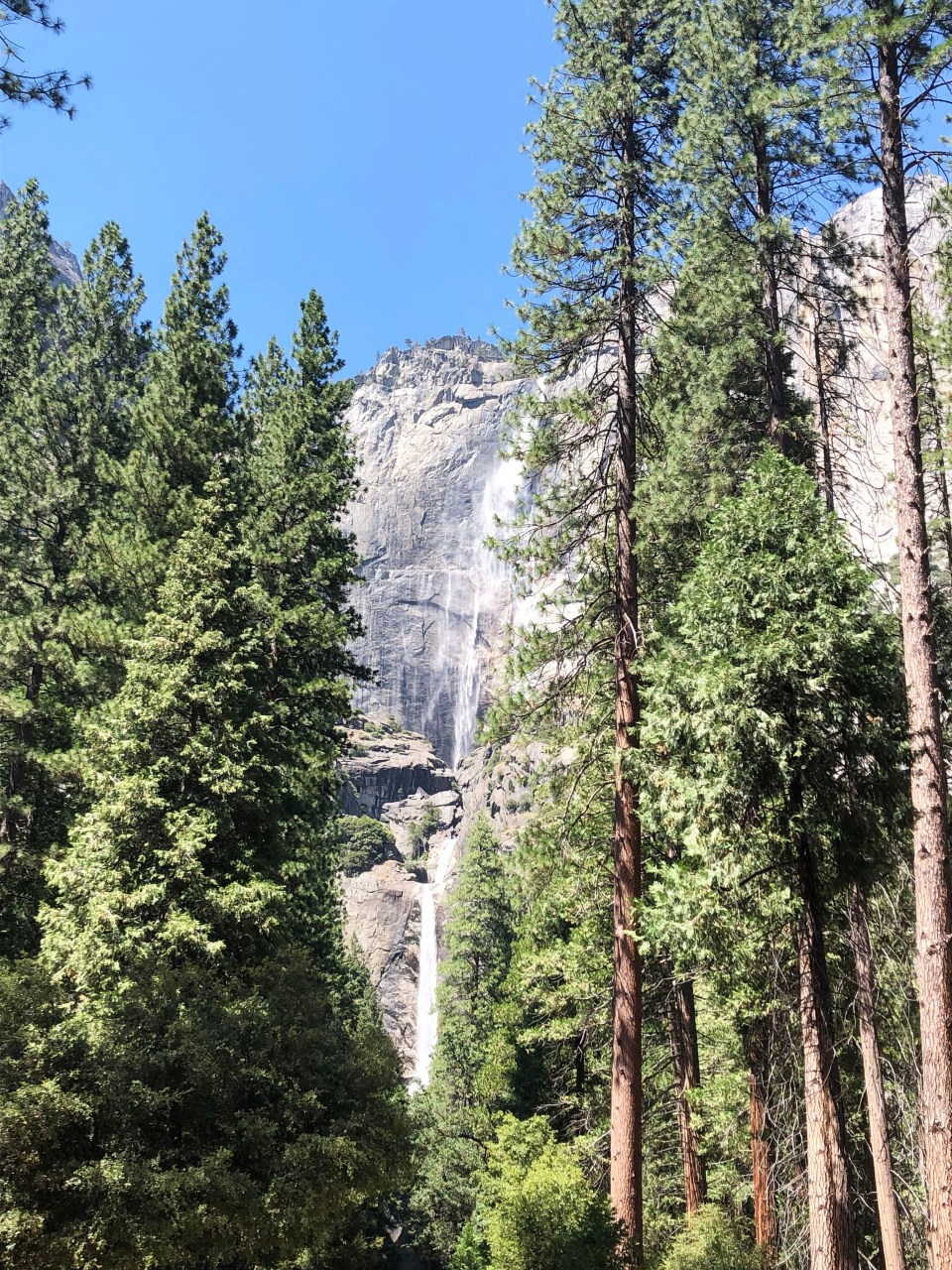 Yosemite National Park - Yosemite Falls