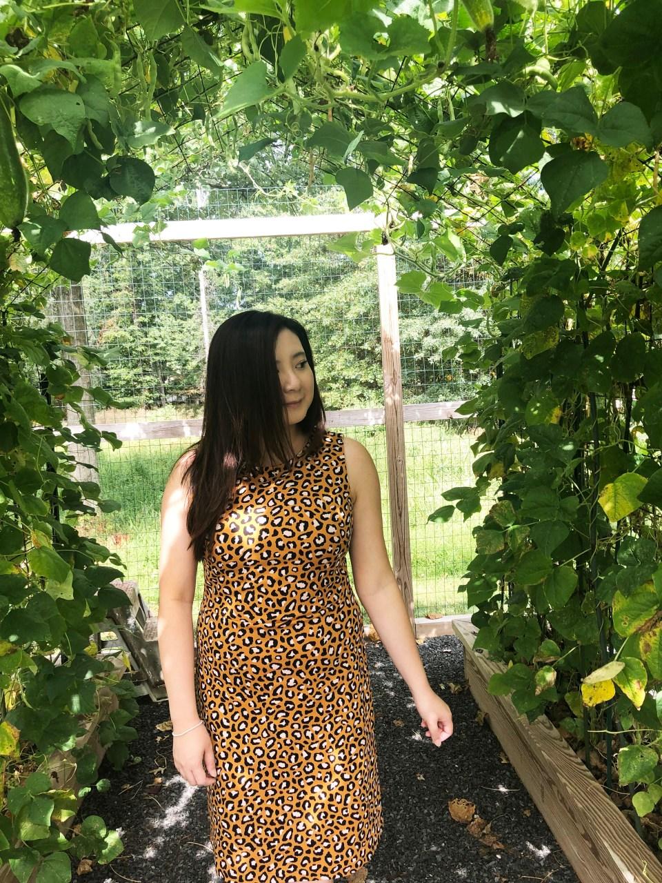 Leopard Sheath Dress 12