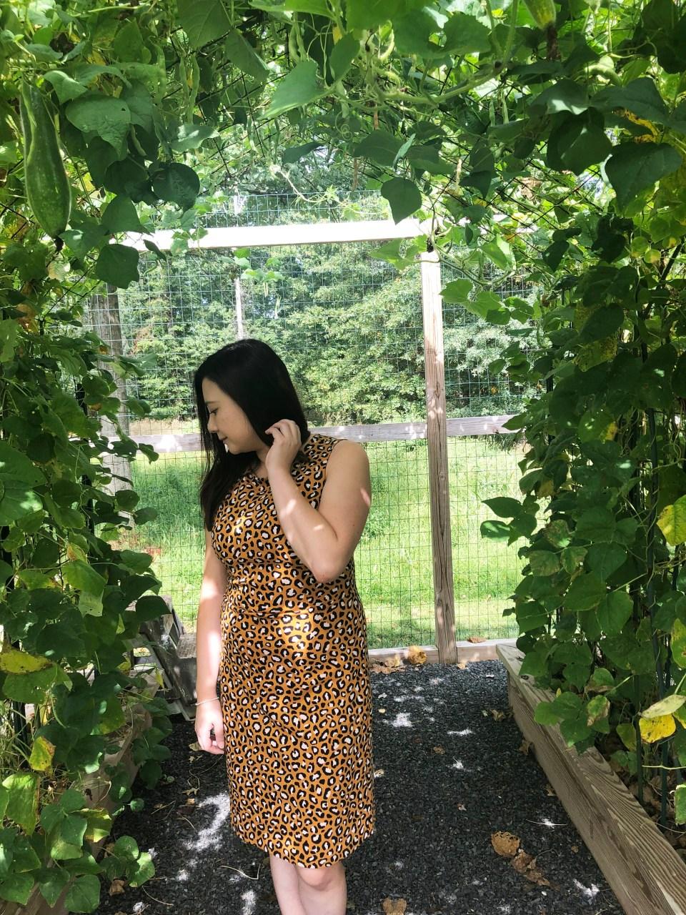 Leopard Sheath Dress 8