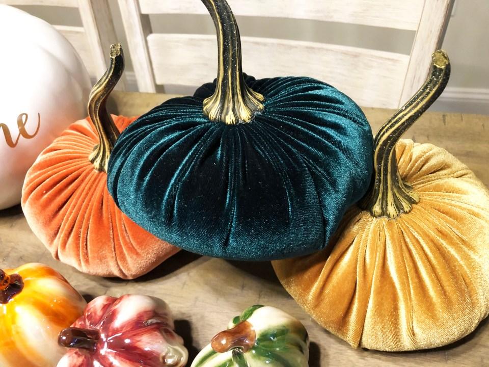 Velvet Pumpkins 5