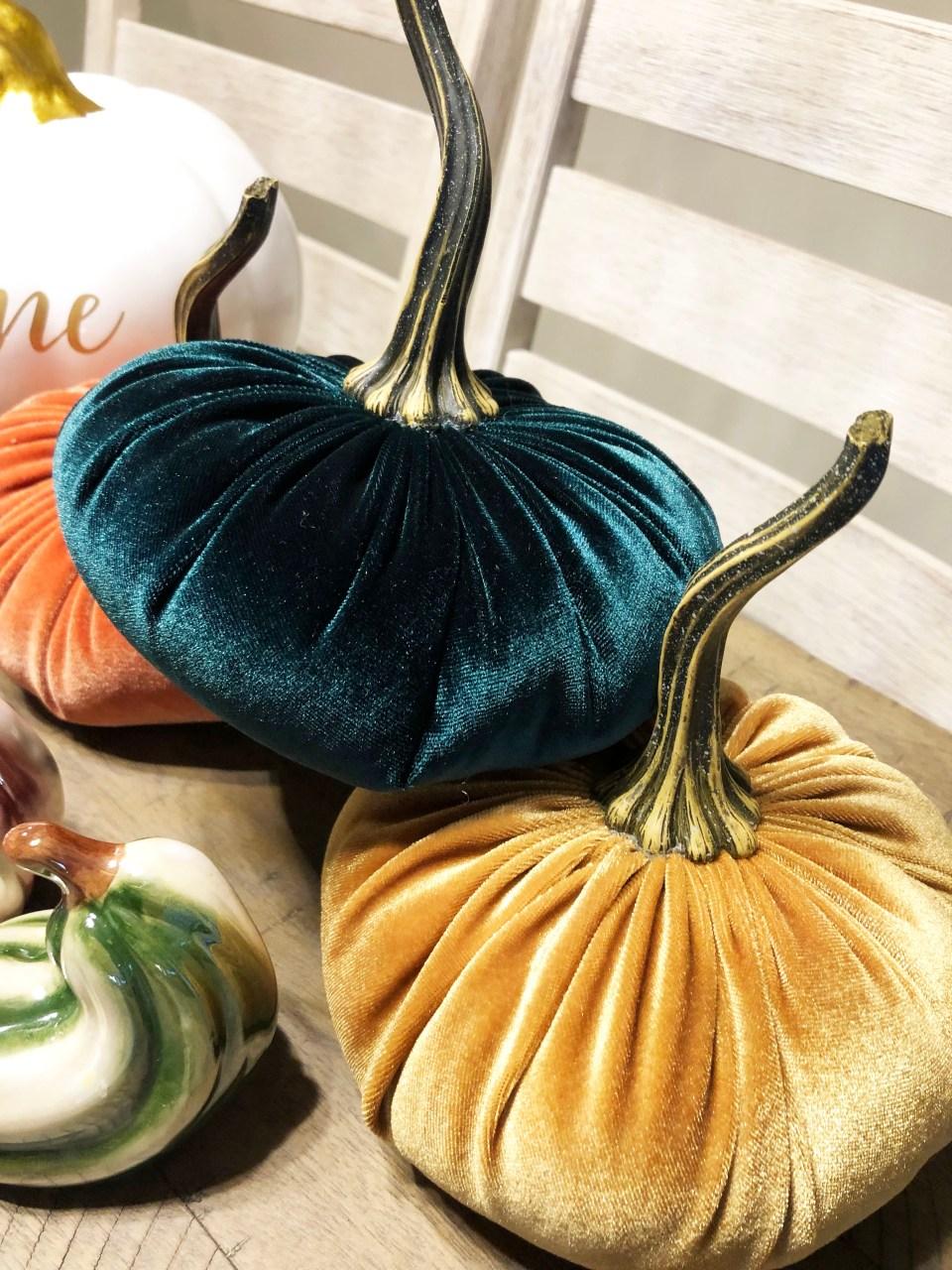 Velvet Pumpkins 7