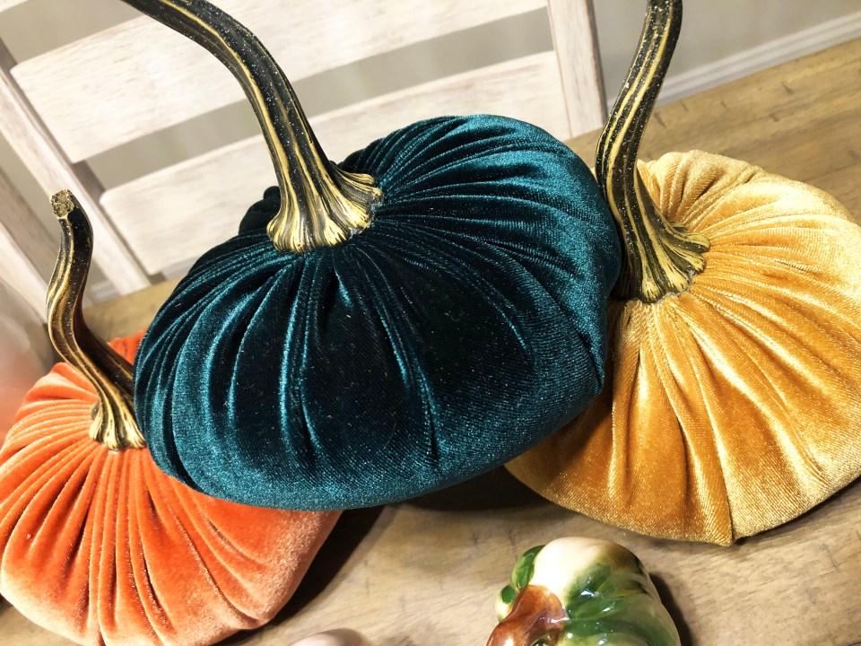 Velvet Pumpkins 8