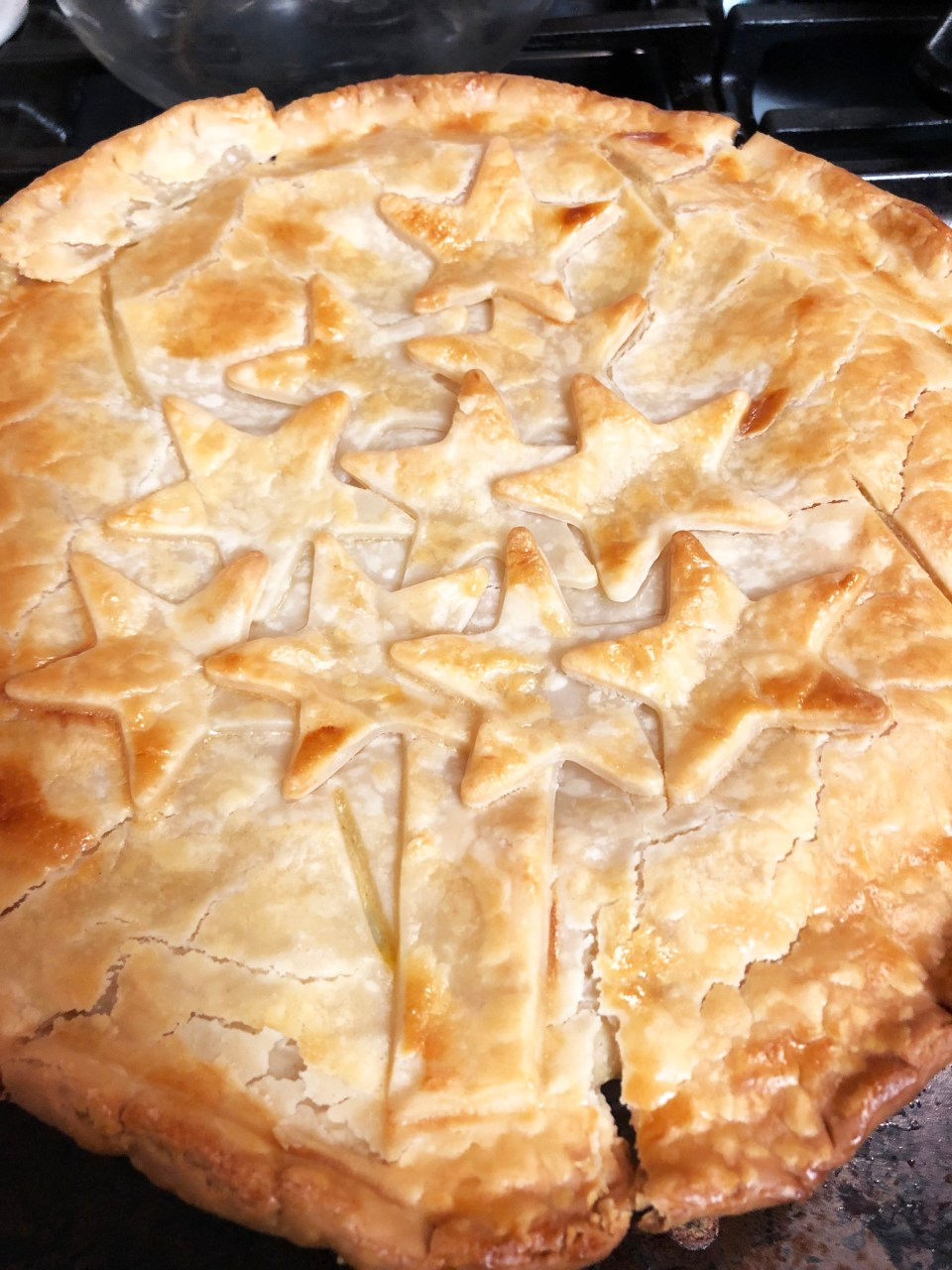 Christmas Chicken Pot Pie 9