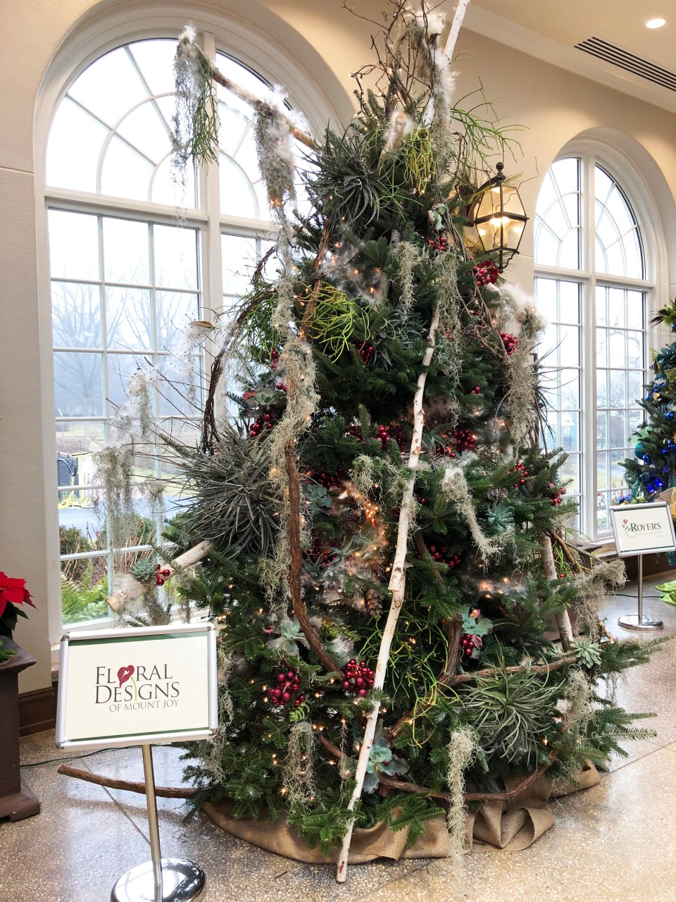 Hershey Gardens - Christmas Tree Showcase 2