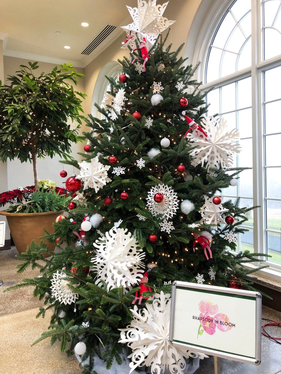 Hershey Gardens - Christmas Tree Showcase 5