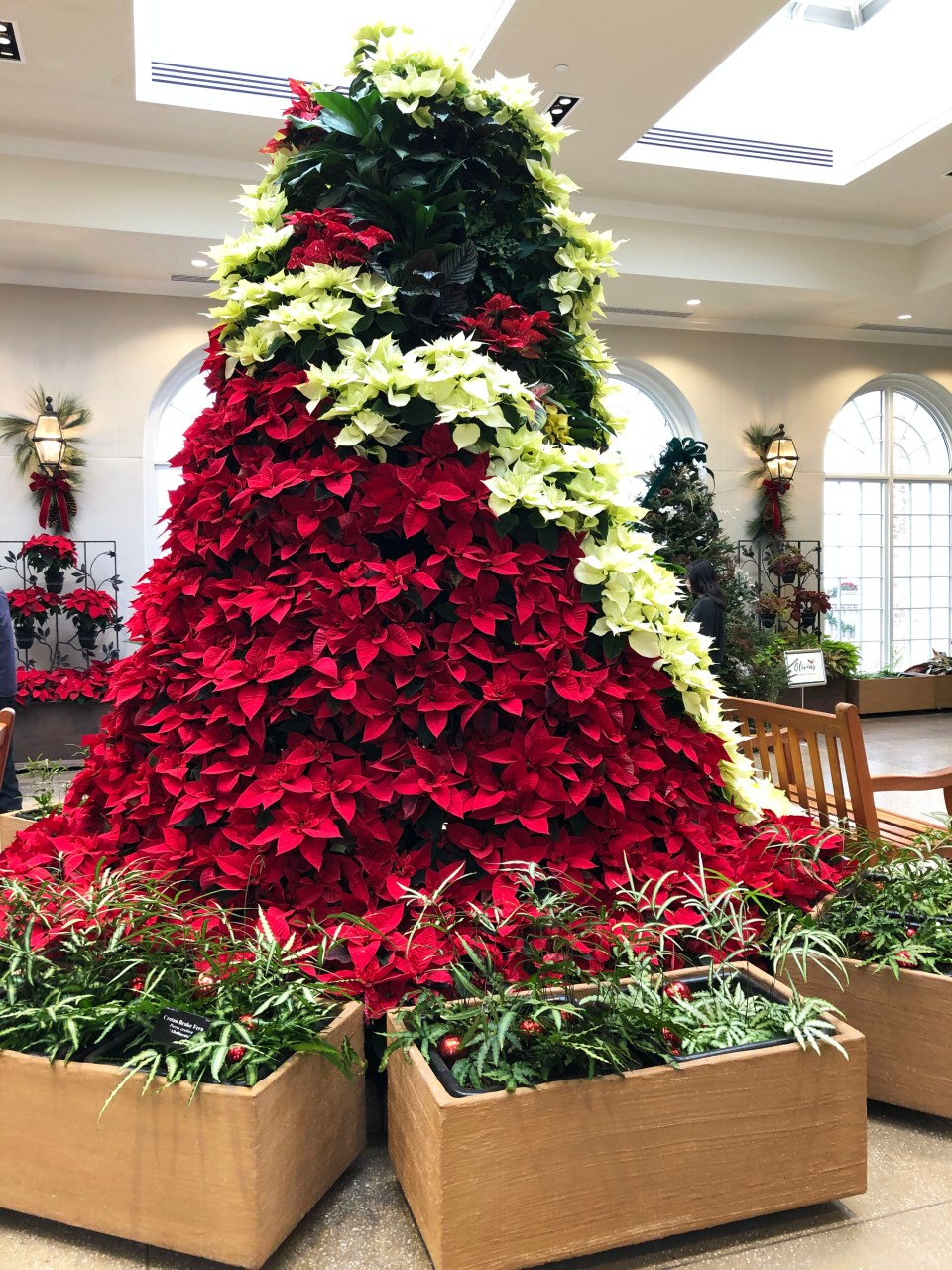 Hershey Gardens - Christmas Tree Showcase 6