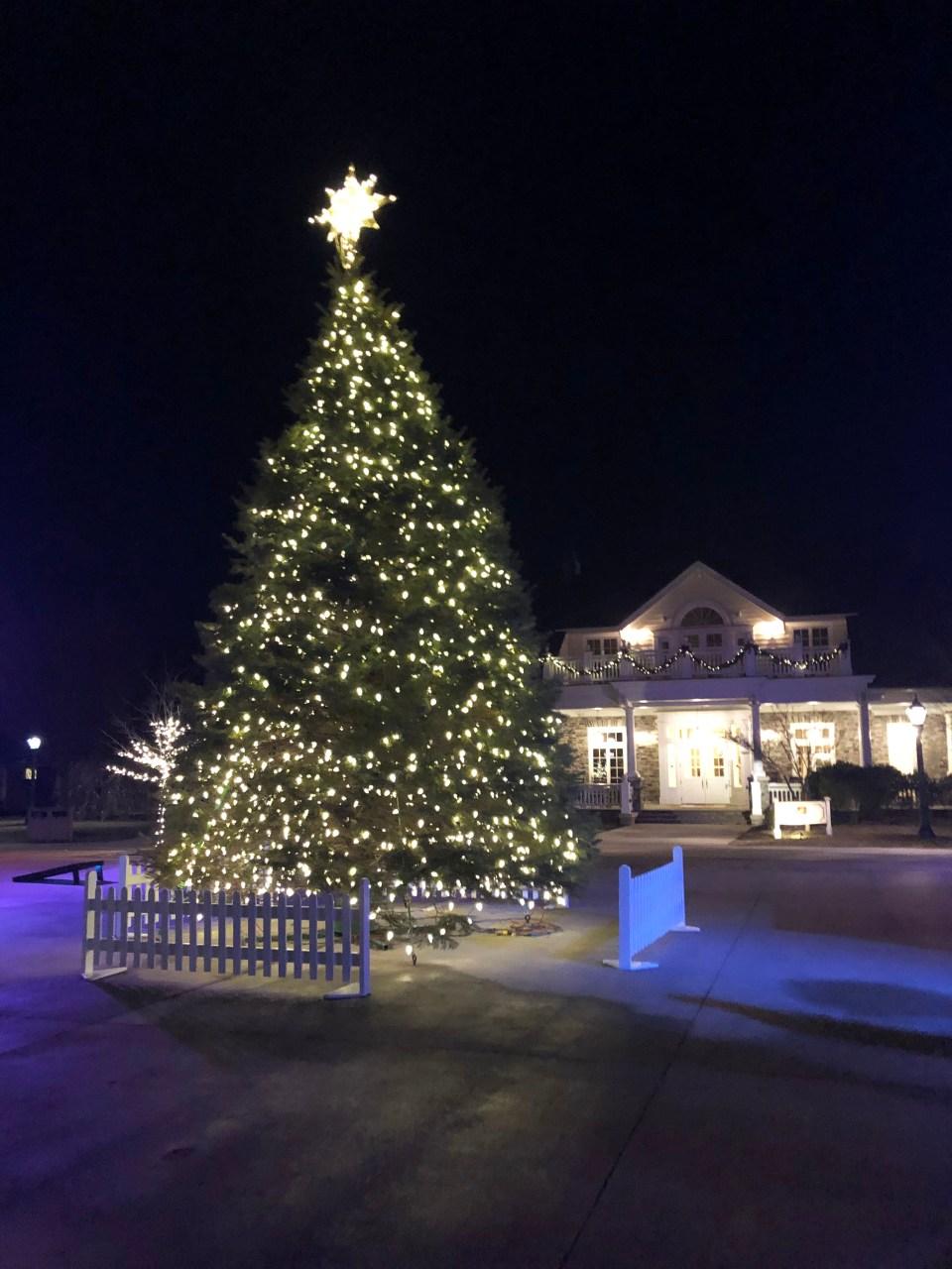 Hotel Hershey - Christmas 4