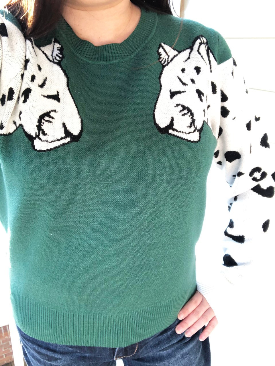 Leopard Sleeve Sweater 12