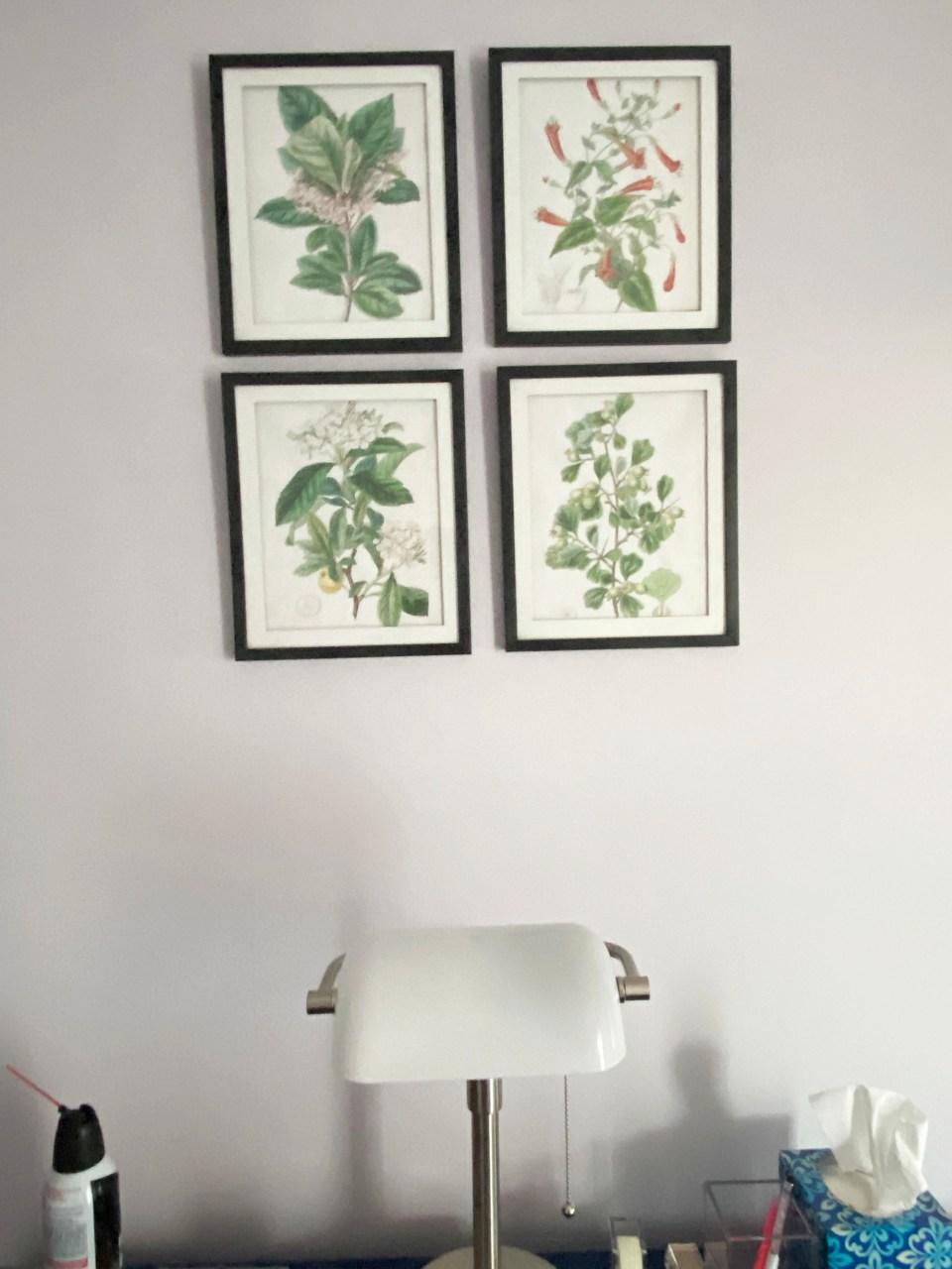Vintage Floral Prints 1