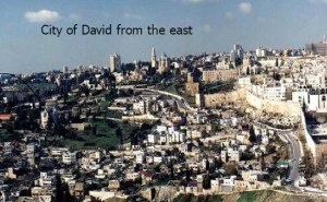 2014 City Of David From East
