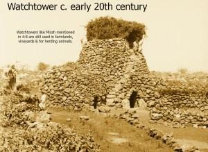 2014 Watchtower