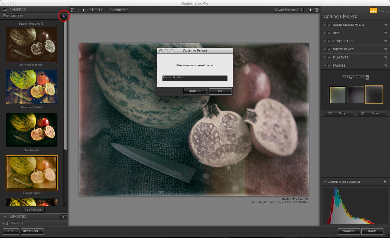 Analog Efex Pro custom presets
