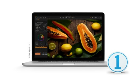Friday photo software news